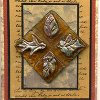 Four Faces of Autumn Card