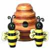 Outdoor Bees and Hive