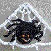 Crochet Spider and Web