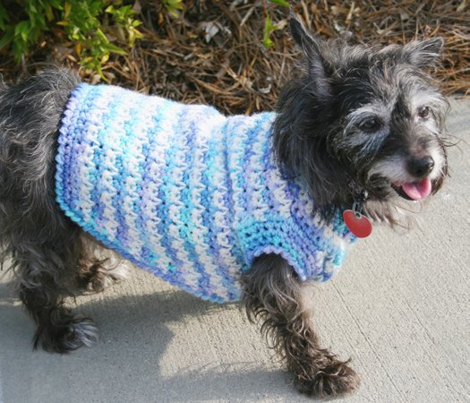 Crochet Xl Dog Sweater : HOW TO CROCHET A SWEATER Crochet For Beginners