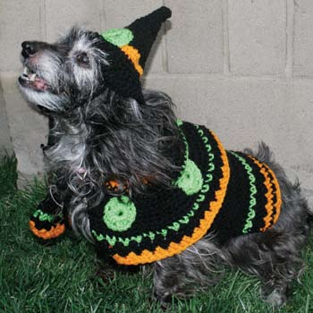 Dog Witch Costume Crochet Pattern From Red Heart Yarn Favecrafts