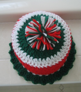 Christmas Toilet Paper Cozy