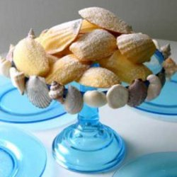 Simple Sea Shell Cake Stand