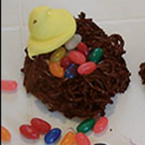 edible bird nest