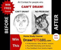 Beginner's Drawing Course with Sandra Angelo