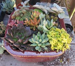 Finished Arrangement