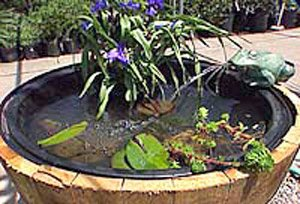 Whiskey Barrel Water Garden