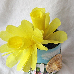coffee filter daffodils