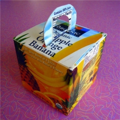 Drink Carton Gift Box Recycle Crafts for Kids