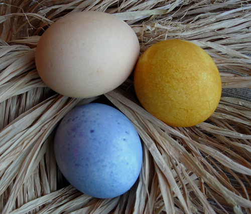 natural easter egg  Egg celent Ideas for your Eggs this Easter