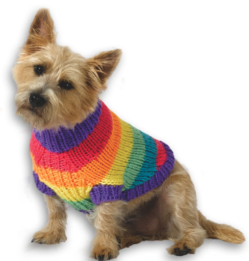 Rainbow Dog Sweater Knitting Pattern From Caron Yarn Favecrafts