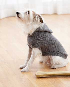 Knitting Pattern For A Small Dog Coat : Dog Hooded Coat FaveCrafts.com