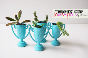 Make a Painted Trohpy Pot