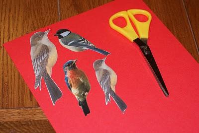 Bird Templates 1
