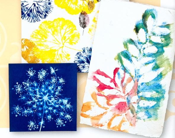 Watercolor Nature Prints
