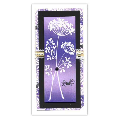 Flower and Spider Card