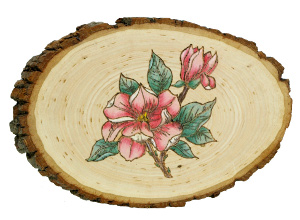 Woodburned Magnolia Plaque